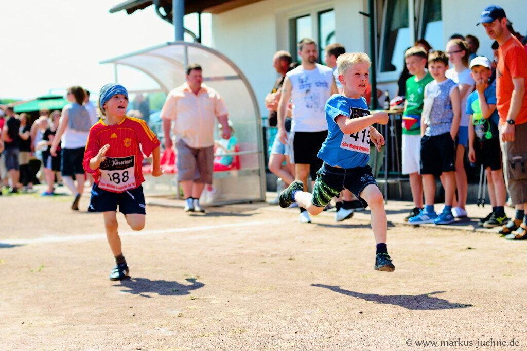Drei-Laender-Lauf-2013-MJ-5.jpg