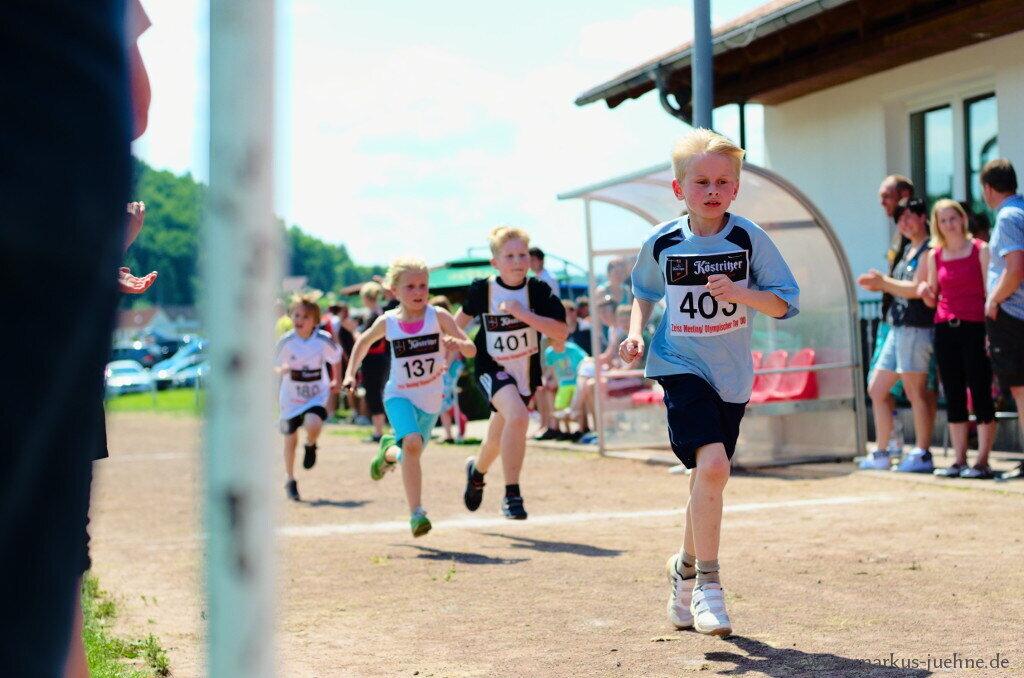 Drei-Laender-Lauf-2013-MJ-8.jpg